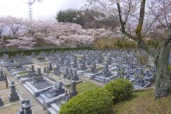 総本山四天王寺 高安山霊園の画像3