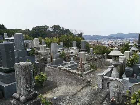 松山市営 平田墓地_0