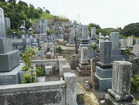 松山市営 平田墓地_2