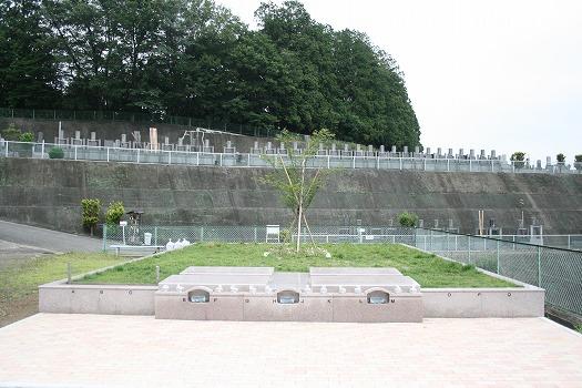 入間霊園 ガーデニング型樹木葬 フラワージュ「桜」_0