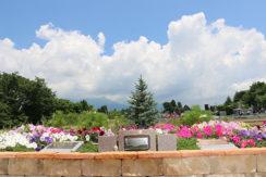 岩窪墓苑 ガーデニング型樹木葬フラワージュの画像1