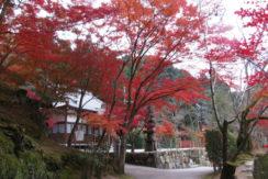 神峯山寺 開成院霊園の画像4