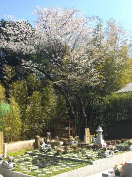 北鎌倉四季の風樹木葬墓地_2
