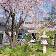 廣済寺 永代供養墓・樹木葬樹木葬(自然葬墓地) 「桜風苑」 合同墓