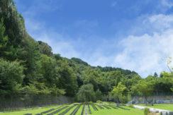 京都天が瀬メモリアル公園の画像1