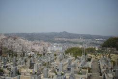 王寺霊園の画像1