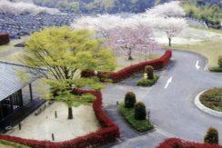 蓮華院御廟の画像1