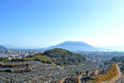 新生田上霊園の画像