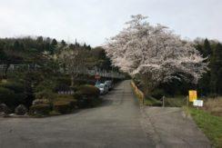 松陵台墓園の画像1