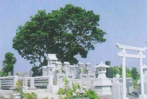 永代供養霊園シーバ鹿児島の画像4