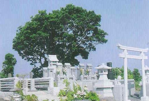 永代供養霊園シーバ鹿児島_0