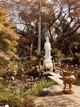 徳林寺 永代供養墓_5