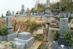 松山市営 馬木墓地の画像1