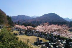 山寺霊園の画像3
