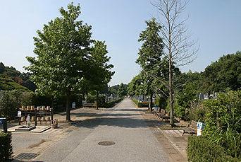 松戸市営 白井聖地公園_2