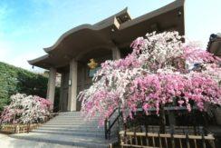 本法寺の画像2