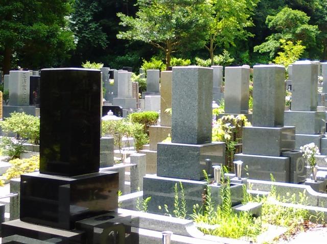 横須賀市営 公園墓地_3