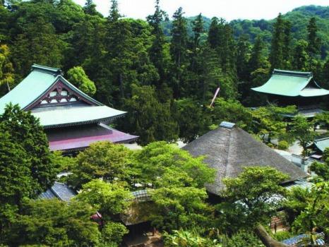 大本山 円覚寺_2