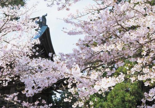 大本山 円覚寺_4