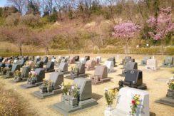 太田市営八王子山公園墓地