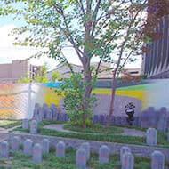 本光寺 永代供養墓・樹木葬永代供養付樹木葬 「新樹区」 夫婦墓