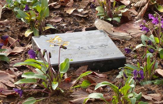 市原南霊園個別合葬墓型 (すみれ葬)