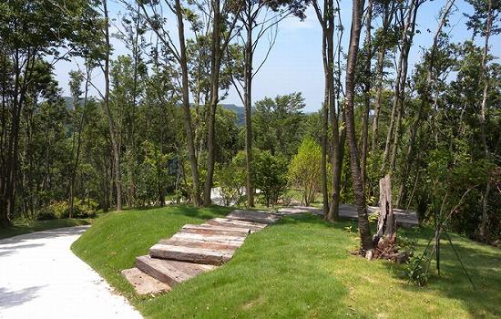 市原南霊園里山樹木葬II 芝生の区画のまま使用する場合