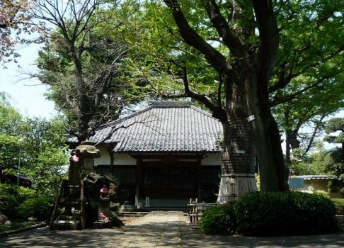 淨光寺(浄光寺)の画像