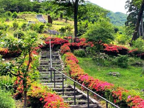 千の風みらい園の画像1