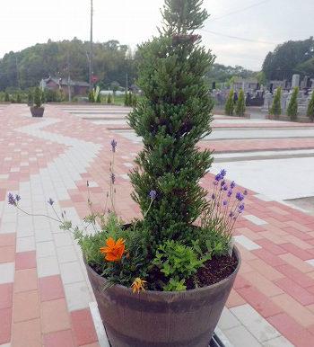 メモリーガーデン水戸東 ひかりの杜霊園の画像4
