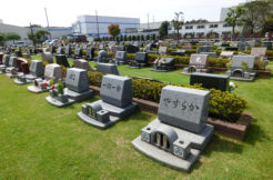 芝生墓地の特徴は?費用やメリット・デメリットを解説します