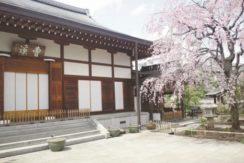 曹渓寺の画像1