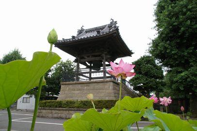 龍寶山(龍宝山) 知行院の画像