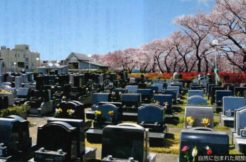 埼玉県さいたま市の墓地・霊園人気ランキングTOP20!お墓の費用・資料請求