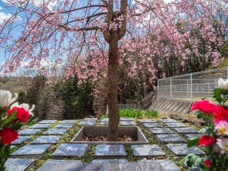 山名霊園 樹木葬2