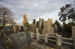 お墓の引っ越し、改葬の手続きは?