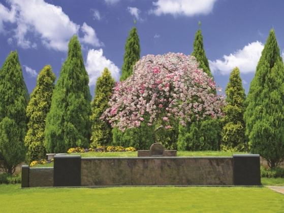サニープレイス松戸樹木の画像3