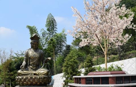 横浜三保浄苑の画像5