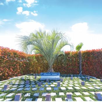 第二朝霞聖地霊園樹木葬型永代供養墓