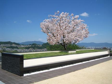 広島平和霊園_0