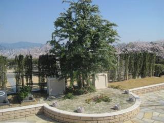 広島平和霊園樹木葬ミモザ 二人用