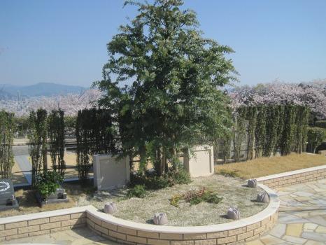 広島平和霊園_2