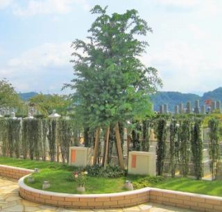 広島平和霊園樹木葬ミモザ 一人用