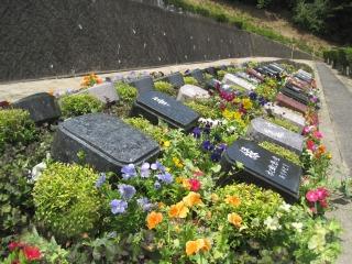 広島平和霊園ガーデニング樹木葬