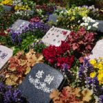 新上桂霊園 樹木葬の画像1