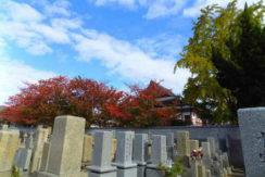 妙国寺霊園の画像002