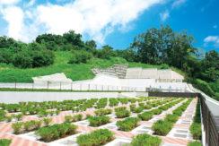 二宮霊園ひかりの丘の画像1