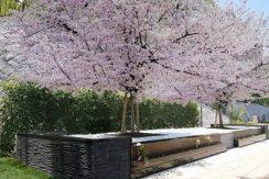 霊源皇寺墓苑の画像3