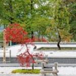 佛光寺 里山浄苑 樹木葬の画像