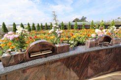 千葉県松戸市の永代供養墓人気ランキングTOP7!お墓の費用・資料請求